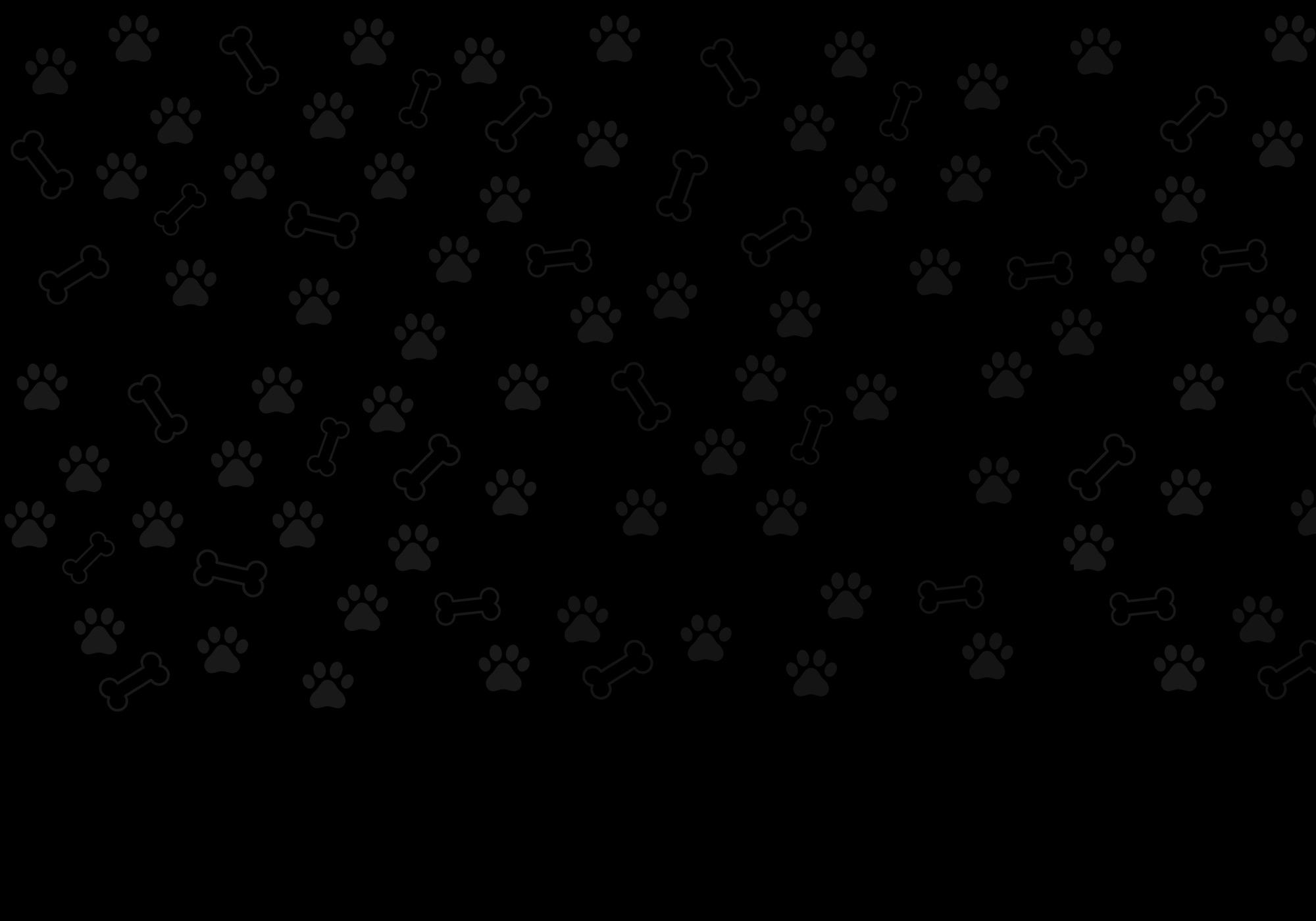 Развъдник Charm and love - предлага кученца Чихуахуа